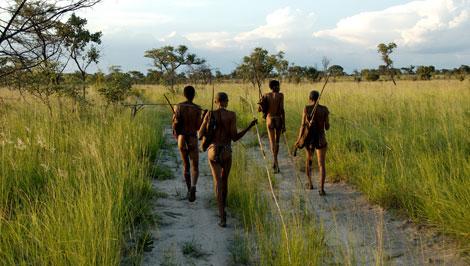 Un grupo de bosquimanos camina por un sendero de Namibia. | Stephan C. Schuster