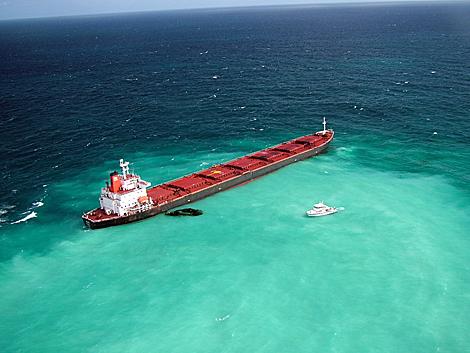El carguero chino encallado, que podría causar un desastre ecológico en la zona. | Efe