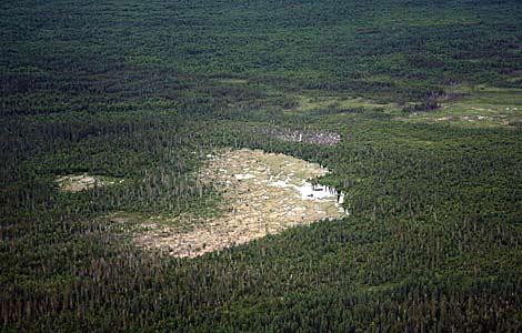 Imagen de la presa en el Parque Nacional Wood Buffalo, en el norte de Canadá.   AFP