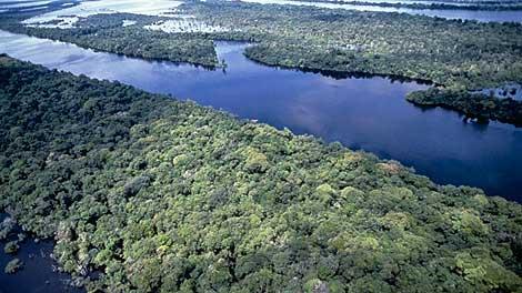 Cauce del río Negro, afluente del Amazonas (El Mundo).