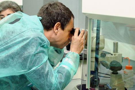 El presidente Rodríguez Zapatero, durante una visita a un laboratorio sevillano. | Eduardo Abad