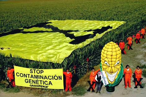 Greenpeace en una protesta contra el cultivo del maíz transgénico.   Efe