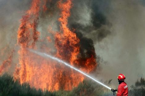 Un bombero lucha contra el fuego en un bosque de Seia.   Efe