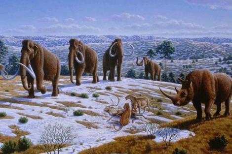 Recreación artística de la fauna glaciar prehistórica que habitaba nuestra península. | P.Novák