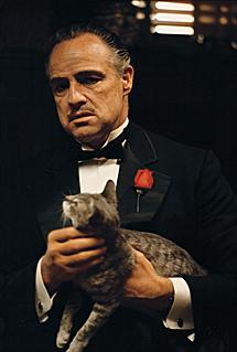 Don Vito Corleone (Marlon Brando).   Taschen