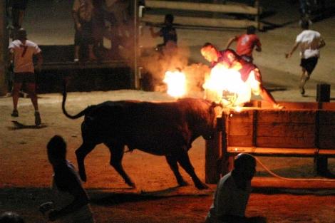 Los 'bous embolats' seguirán celebrándose | J. Antonio