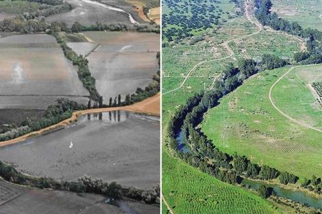 La cuenca del Guadiamar, tras el vertido (izq.) y a día de hoy (der.). | ELMUNDO.es