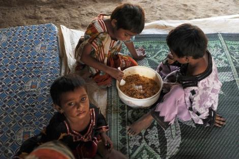 La FAO obvia el análisis de las causas profundas del hambre en el mundo | Solidaridad | elmundo.es