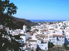 Panorámica de Algarrobo.