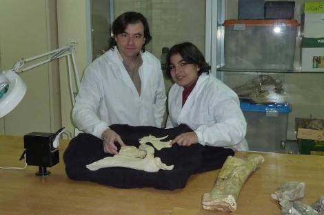José Ignacio Canudo y Penélope Cruzado, con los fósiles.| Universidad de Zaragoza