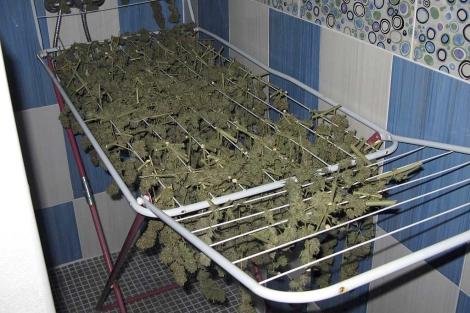 Parte del material incautado por la Guardia Civil.   Efe