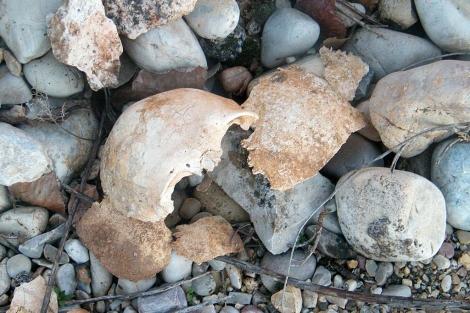 Las últimas han dejado al descubierto restos humanos. | J. Solé.