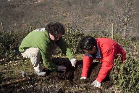 Enrique Segovia y Katsuhito Ohno sembrando un árbol.