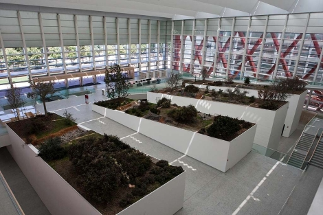 Interior del Museo de la Evolución Humana. | P. REQUEJO
