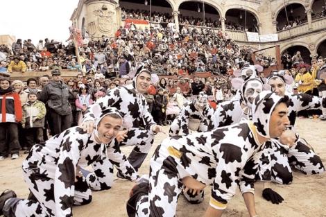 Un grupo de mirobrigenses disfrazados de vaca en el Carnaval del Toro, en Ciudad Rodrigo. | Ical