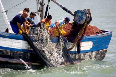 Pescadores tirando alevines de pescado en la desembocadura del Guadalquivir en 2007.   Jesús Renedo/Oceana