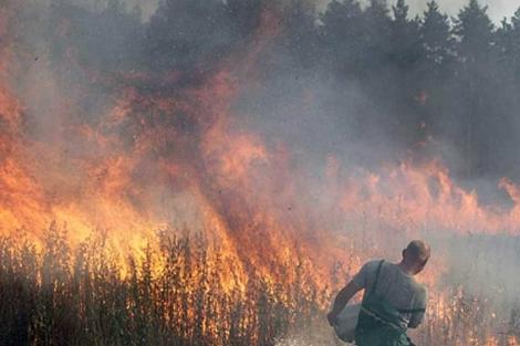 La ola de calor en Rusia provocó miles de muertos y cuantiosas pérdidas. | Efe