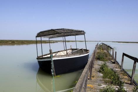 Una barcaza en el Guadalquivir en la finca Veta la Palma.