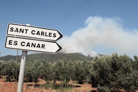 Humareda provocada por el incendio de Ibiza.   Toni Escobar
