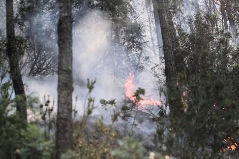 Imagen del incendio de Sa Morna | Toni Escobar