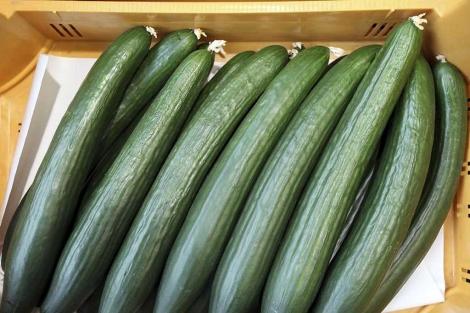 Pepinos de cultivos españoles son vendidos en Hamburgo (Alemania).| Efe
