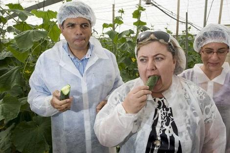 La consejera de Agricultura, Clara Aguilera, se come un pepino en Almería.   Efe