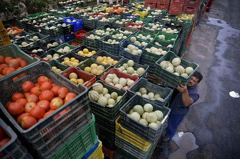 Cajas con hortalizas en una alhóndiga de El Ejido, en el Poniente de Almería.   Efe
