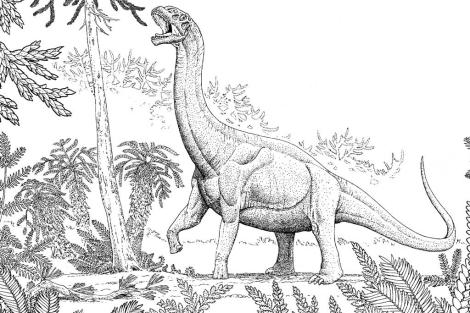 El estudio se hizo con fósiles de saurópodos, como el que muestra esta recreación.   R. Hawley.