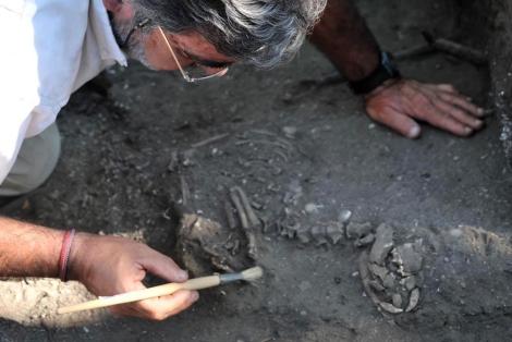 Un investigador excava en la tumba del perro.|UC