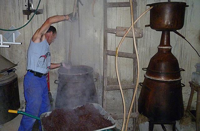 Jose, aguardientero rural, carga el bagazo para destilar. | S. P.
