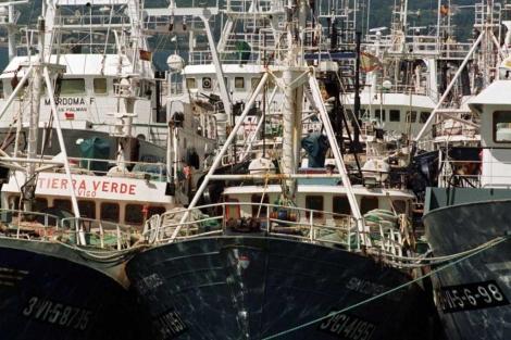 Flota pesquera en Pontevedra. | Miguel Riopa.