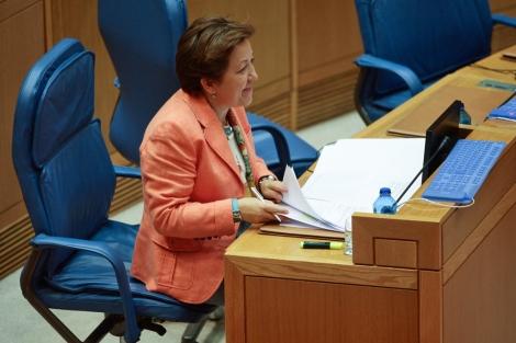 La conselleira de Sanidade, Pilar Farjas. | Xunta de Galicia