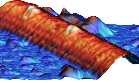 Motores proteicos moviéndose por un filamento celular. | Pedro. J. de Pablo.