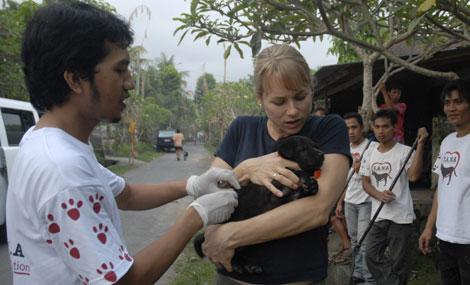 Elly Hiby, de WSPA, sostiene a un cachorro mientras es vacunado contra la rabia.