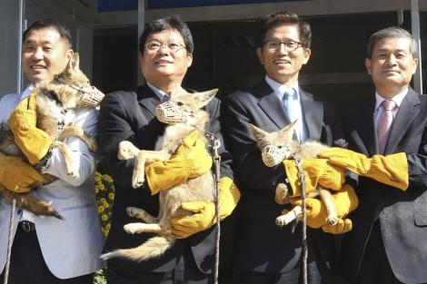 Los científicos surcoreanos, con tres de los coyotes clonados. | Efe