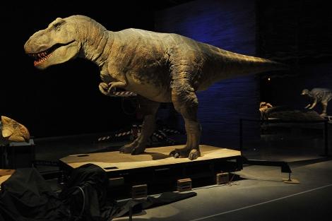 El fósil de un dinosaurio en el Parque de las Ciencias de Granada. | Rep. Gráfico: J.G. Hinchado