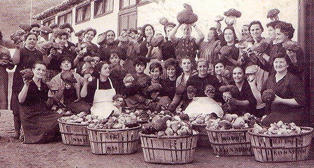 Empresa de transformación de setas en San Leonardo en 1961.