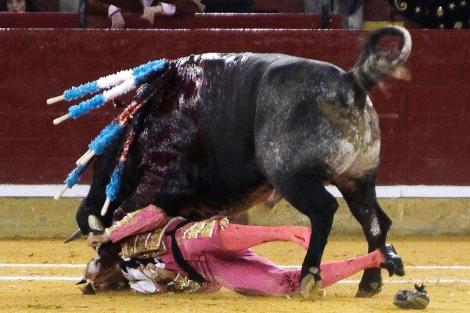 Imagen de la grave cogida sufrida por Padilla el pasado octubre en Zaragoza.   Afp