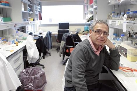 El biólogo Ginés Morata, que recibió el premio Príncipe de Asturias en 2007, en una foto de archivo. | A. M. Xouvanova.
