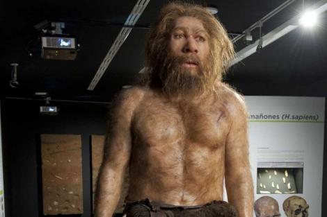 Un neandertal adulto, en la exposición del Museo de Evolución Humana. | MEH