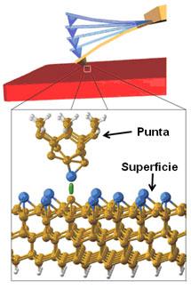 Simulación teórica de la interacción entre los átomos de la punta y la superficie en un microscopio de Fuerzas.