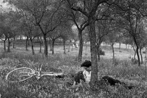 Amantes en Parco della Rimembranza (1950)