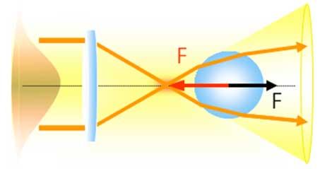 Una nanopartícula atrapada mediante luz.   R. Arias-González.
