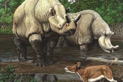 Recreación de una escena del Eoceno en Norteamérica.   Carl Buell   PNAS