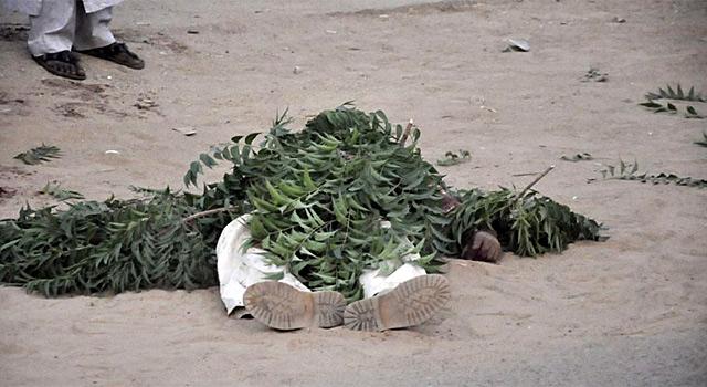 Un cadáver tapado por las hojas en una de las calles de Kano. | Reuters