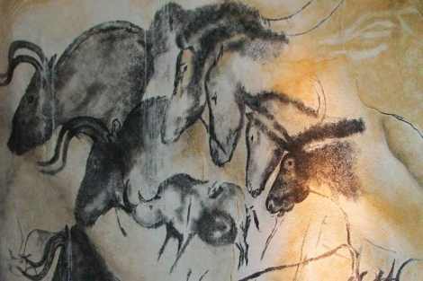 Pinturas rupestres de caballos en la cueva de la Chauvet (Francia). |PNAS