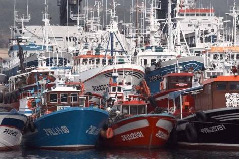 Barcos pesqueros en Ribeira (A Coruña).   Efe