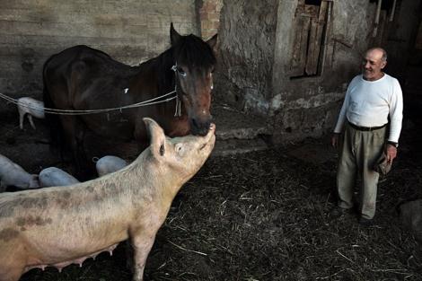Colquhoun busca transmitir la dignidad de la gente que vive en el rural. | Iain Colquhoun