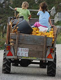 'Niñas y maíz'. | Iain Colquhoun