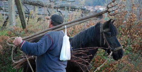 'Hombre y caballo'. | Iain Colquhoun
